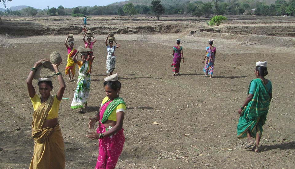 2015 PRASAD's Water and Soil Conservation Efforts